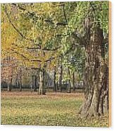 Arrival Of Autumn Wood Print