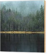 Arrow-straight Evergreens Are Reflected Wood Print