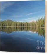 Arrowhead Reflection Wood Print
