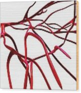 Arteries, Computer Artwork Wood Print