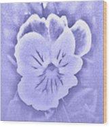 Artistic Pansy Wood Print