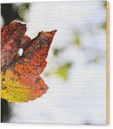 Artsy-fartsy Autumn I Wood Print