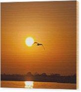 As The Gull Glides Wood Print