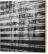 As The Swamp Sleeps Wood Print by Empty Wall