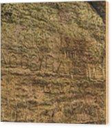 Ash Cave Etchings Wood Print