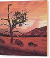 Ashland Sunset Wood Print