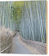 Asia Japan Kyoto Arashiyama Sagano Wood Print by Rob Tilley