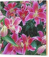 Asiatic Lillies Wood Print by Randall Weidner