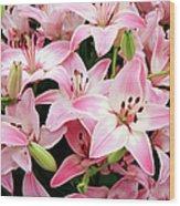 Asiatic Lily (lilium 'vermeer') Wood Print