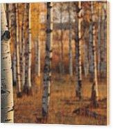 Aspen Amber Wood Print