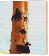 Aspen Face Wood Print