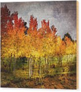 Aspen Grove In Autumn Wood Print