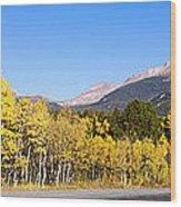 Aspen Highway7 Wood Print