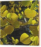 Aspen Leaves 1 Wood Print