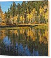 Aspen Mirror Wood Print