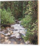 Aspen Stream Wood Print