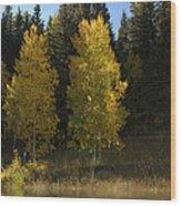 Aspen Twins Wood Print