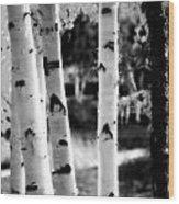 Aspens Wood Print