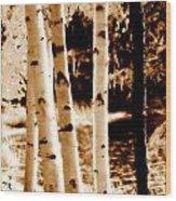 Aspens S Ll Wood Print