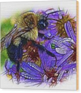 Asters With Dew And Bumblebee Wood Print