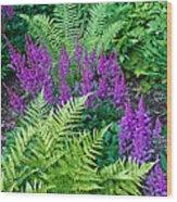 Astilbe And Ferns Wood Print