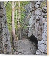 At A Cliff's Edge Wood Print