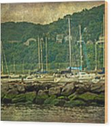 At Home In The Harbor - Atlantic Highlands  Nj Wood Print