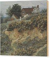 At Sandhills Witley Wood Print
