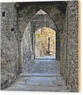 At The End Of The Passageway Wood Print