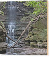 At The Falls Wood Print