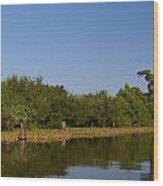 Atchafalaya Basin 24 Wood Print