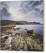 Atlantic Coast In Newfoundland Wood Print