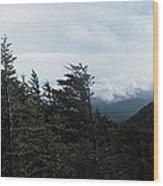 Attic Window View Wood Print
