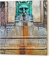 Au Non Potable A Fountain In Arles Wood Print