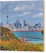 Auckland Wood Print