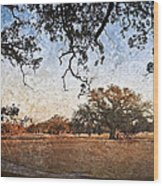 Audubon Golf Course Wood Print