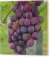 August Grapes Wood Print