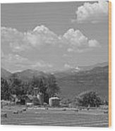 August Hay 75th  St Boulder County Colorado Black And White  Wood Print