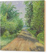 August Lane Wood Print