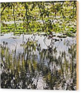 August Reflections Wood Print