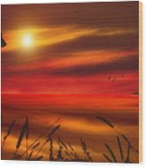 August Sunset Wood Print by Tom York Images