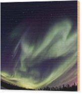 Aurora Goose Wood Print
