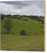 Aussie Countryside Wood Print