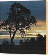 Aussie Silhouette Wood Print