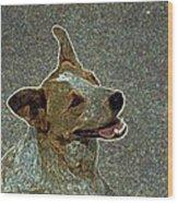 Australian Cattle Dog Mix Wood Print