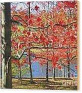 Autum Colors Wood Print
