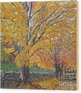 Autum Trail Wood Print
