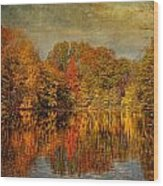 Autumn - Landscape - Tamaques Park - Autumn In Westfield Nj  Wood Print