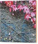 Autumn 14 Wood Print by Elena Mussi