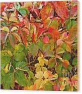 Autumn 4 Wood Print by Elena Mussi